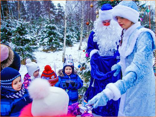 Новогодние приключения Деда Мороза