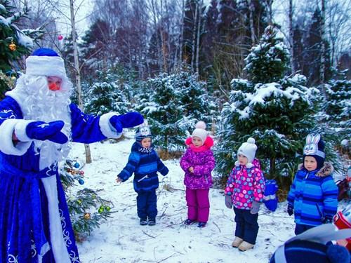 Дед Мороз в лесу с детьми возле елки